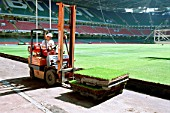 Cardiff Millennium Stadium. The turf for the pitch is on pallet units allowing quick removal for maintenance or for converting the stadium for arena events like pop concerts.
