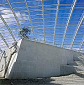 Interior of largest glass span roof: Great Glass House, National Botanic House of Wales. Carmarthenshire, Wales, United Kingdom. Designed by Norman Foster and Partners.