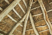Wooden eaves under a thatch roof, Suffolk, UK
