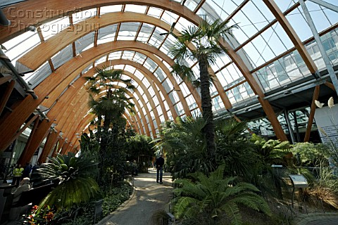 A066 00017 Winter Garden Sheffield Yorkshire And Humb