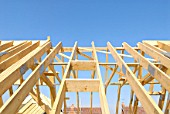 Roof trusses, pitched roof.
