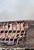 House on fire, detail of roof