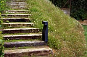 Wooden steps with grass and flowers
