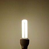 Illuminated lightbulb